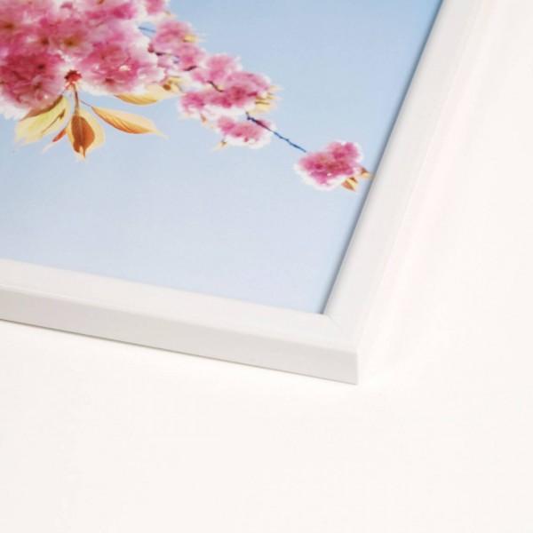 Kunststof fotolijst - Iris wit