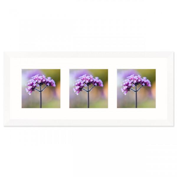Fotolijst Anima - drieluik 13x13 cm - wit
